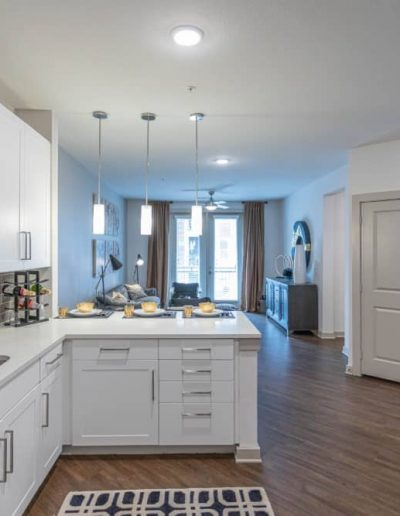 gallery-paxton-cool-springs-apartments-for-rent-franklin-tn-7